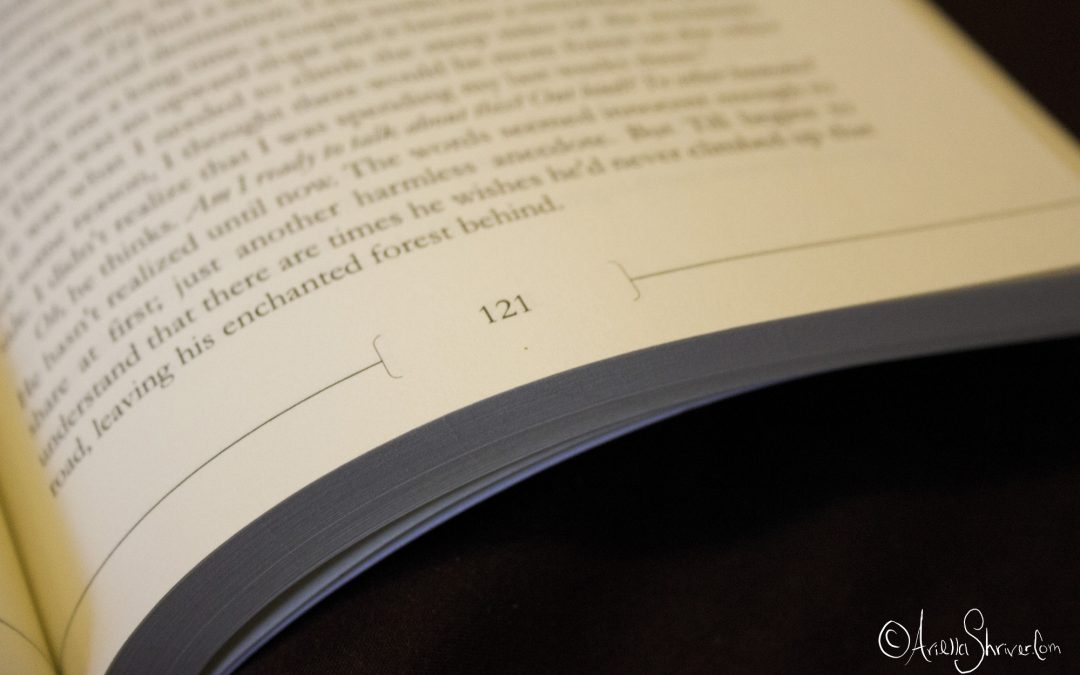 The Wild Story of How I Put Page Numbers into My KDP